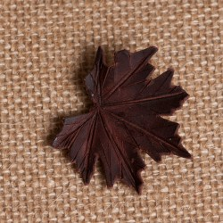 Broche Acer platanoides