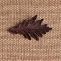 Broche Quercus pyrenaica mediano