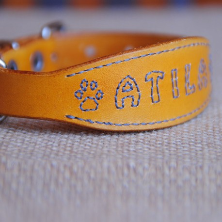 Collar para yorkshire terrier