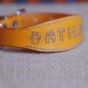 Collar para yorkshire terrier (Atila)